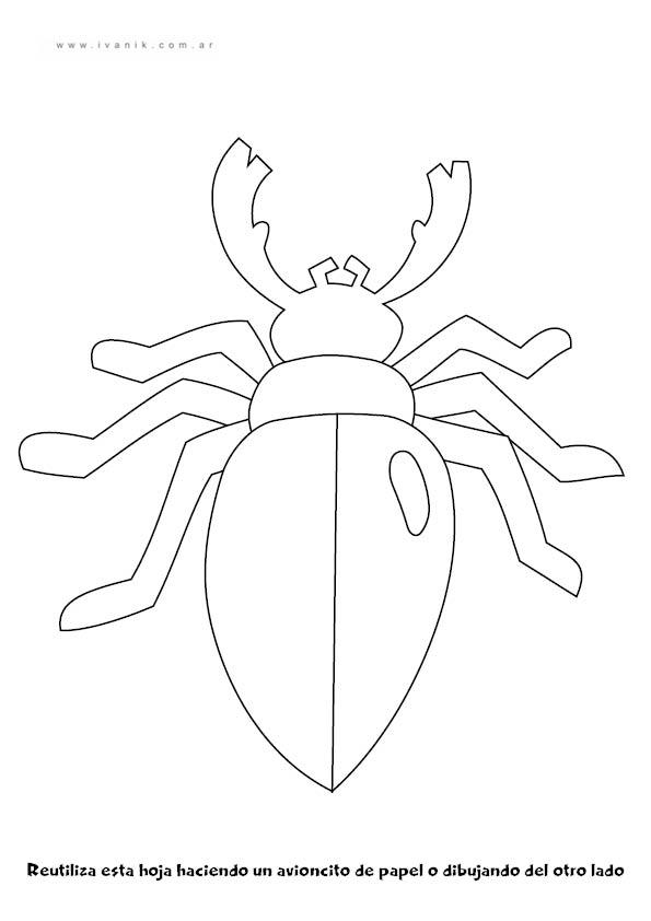 Escarabajo | trabajos para potencializar audición, vision ...