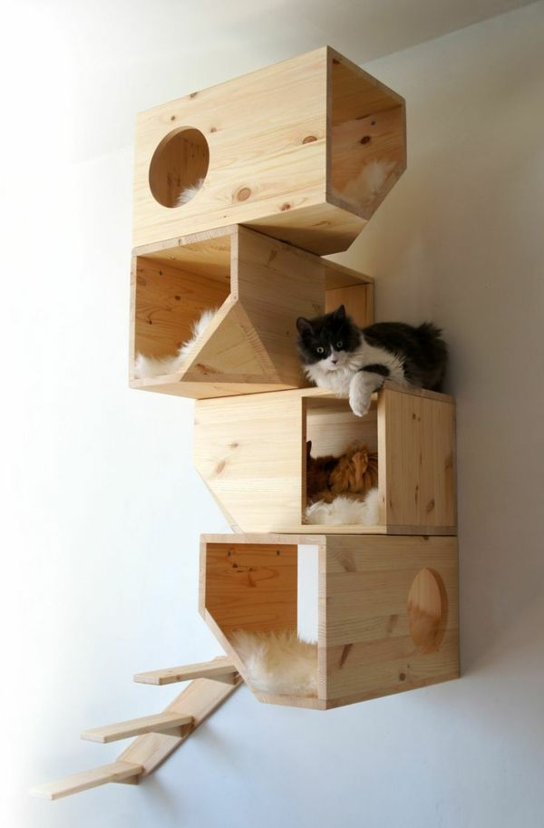 "Holzmöbel design  Design Katzenmöbel ""in the box"" Holzmöbel 