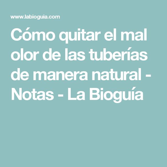 Cómo quitar el mal olor de las tuberías de manera natural - Notas - La Bioguía