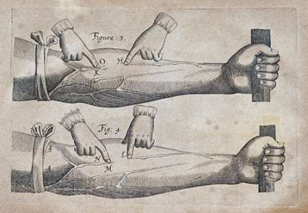 Discovery of The Circulation of Blood