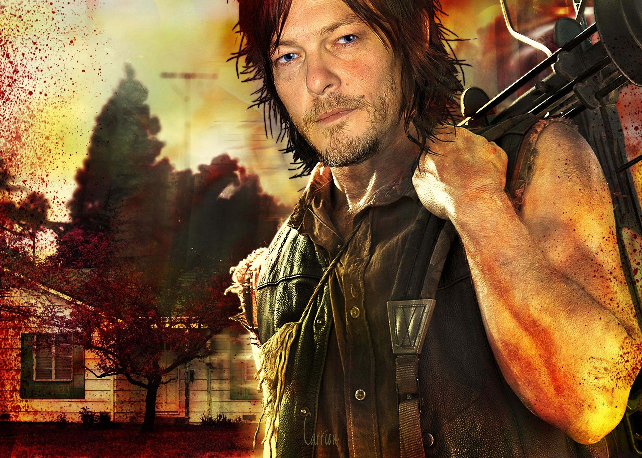 Daryl pic suburbs and dark places carriontrilevel pinterest