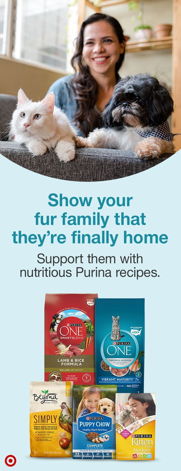 Take On Pet Parenthood With Help From Purina With Nutrient Rich Recipes Designed To Support Cats And D Baby Animals Pictures Cute Animal Memes Cute Small Dogs