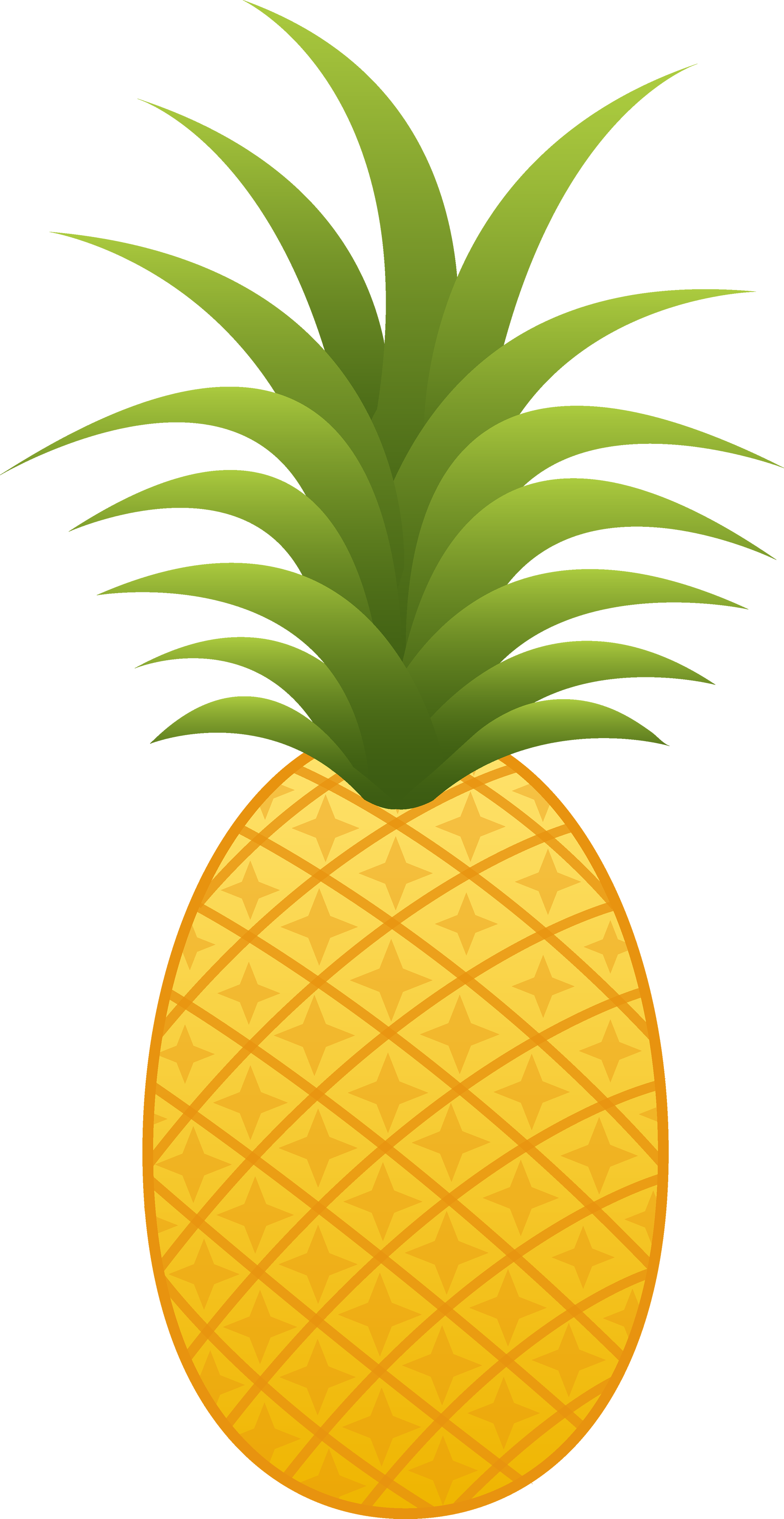 Pineapple images free pictures download 3 Pineapple