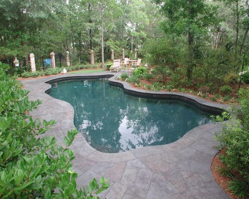 Free Form Swimming Pool And Spa With Water Features In Mt Pleasant Sc Residential Pool Swimming Pool Galleries Swimming Pools