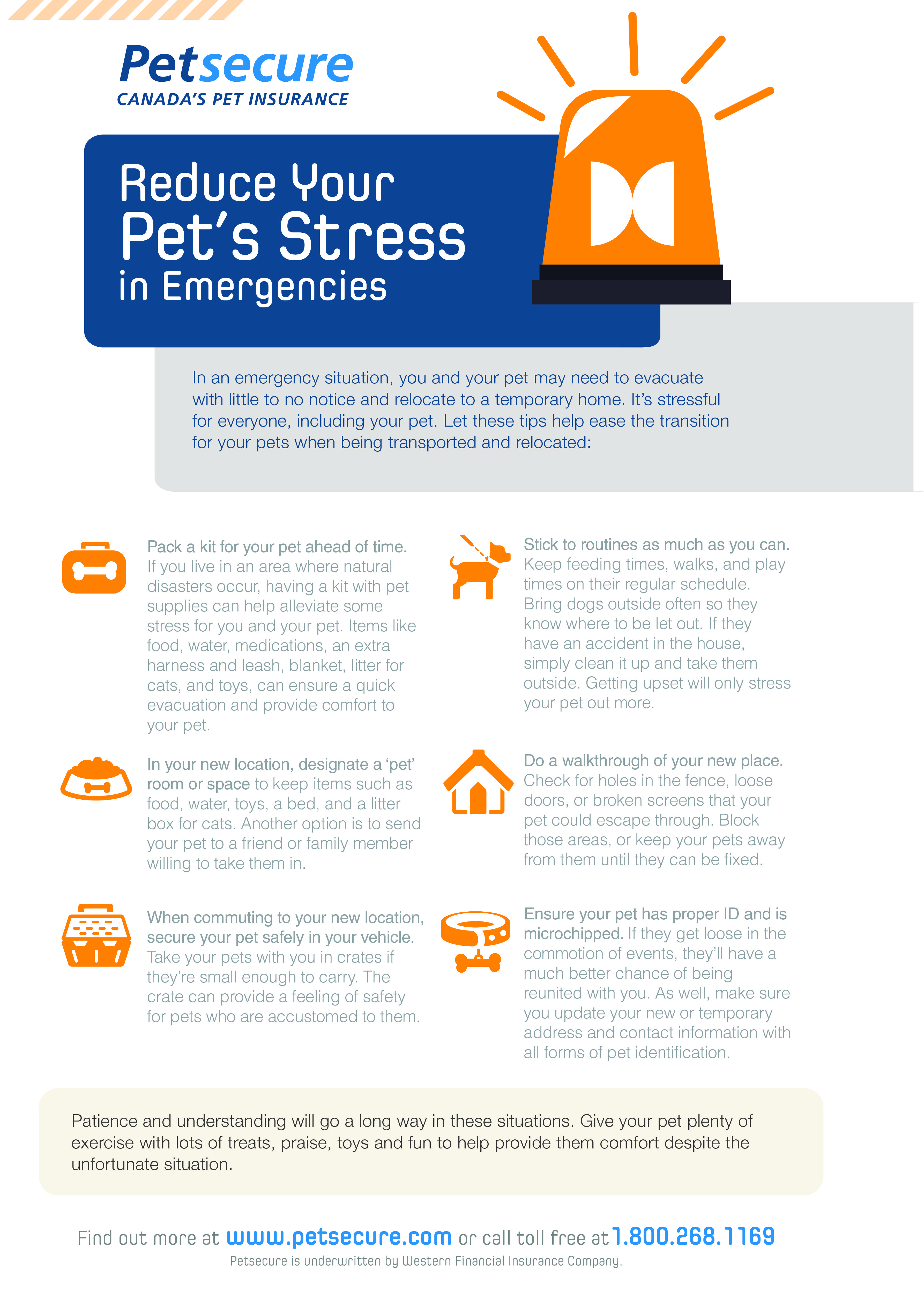 Reduce Your Pet S Stress In Emergencies Best Health Insurance