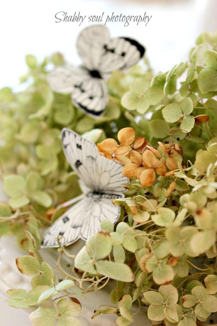 Shabby soul: paper butterflies