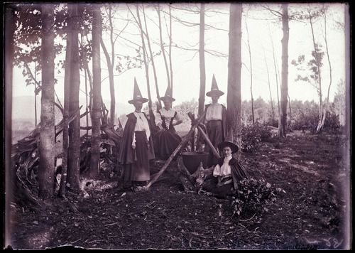 witches in the forest Witches Pinterest Witches, Vintage witch - haunted forest ideas for halloween