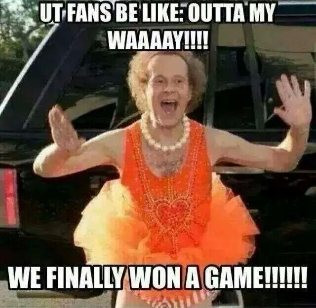 Image result for crazy vol fans