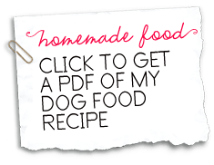 Click to get a pdf of my homemade dog food recipe eddie foods sadie shih tzus homemade dog food recipe forumfinder Image collections