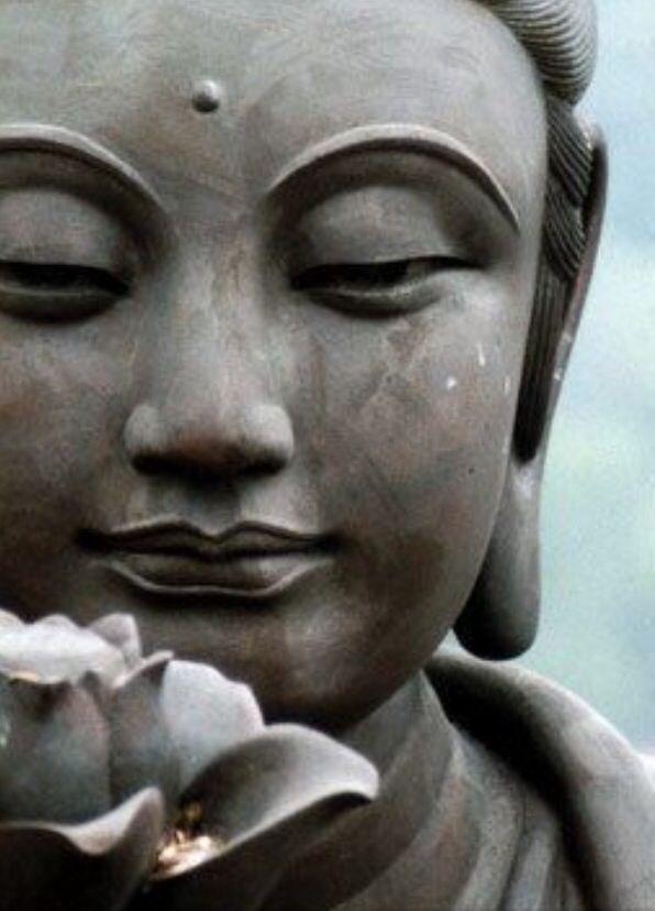 Buddha Wallpaper Phone Wallpapers And Cases Buddha Buddhism Zen