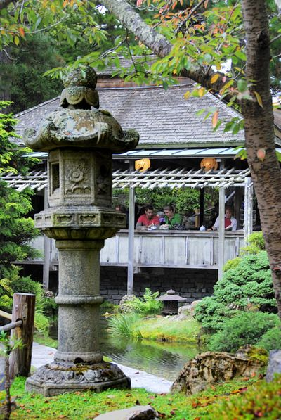 Latest Travel Answers for Japanese Tea Garden | Trippy
