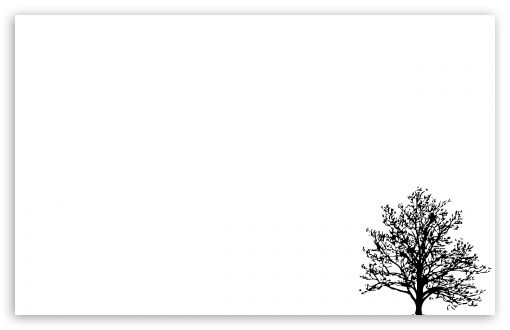 Pin By Pahola On Tree White Background Wallpaper Minimalist Wallpaper Minimalist Desktop Wallpaper