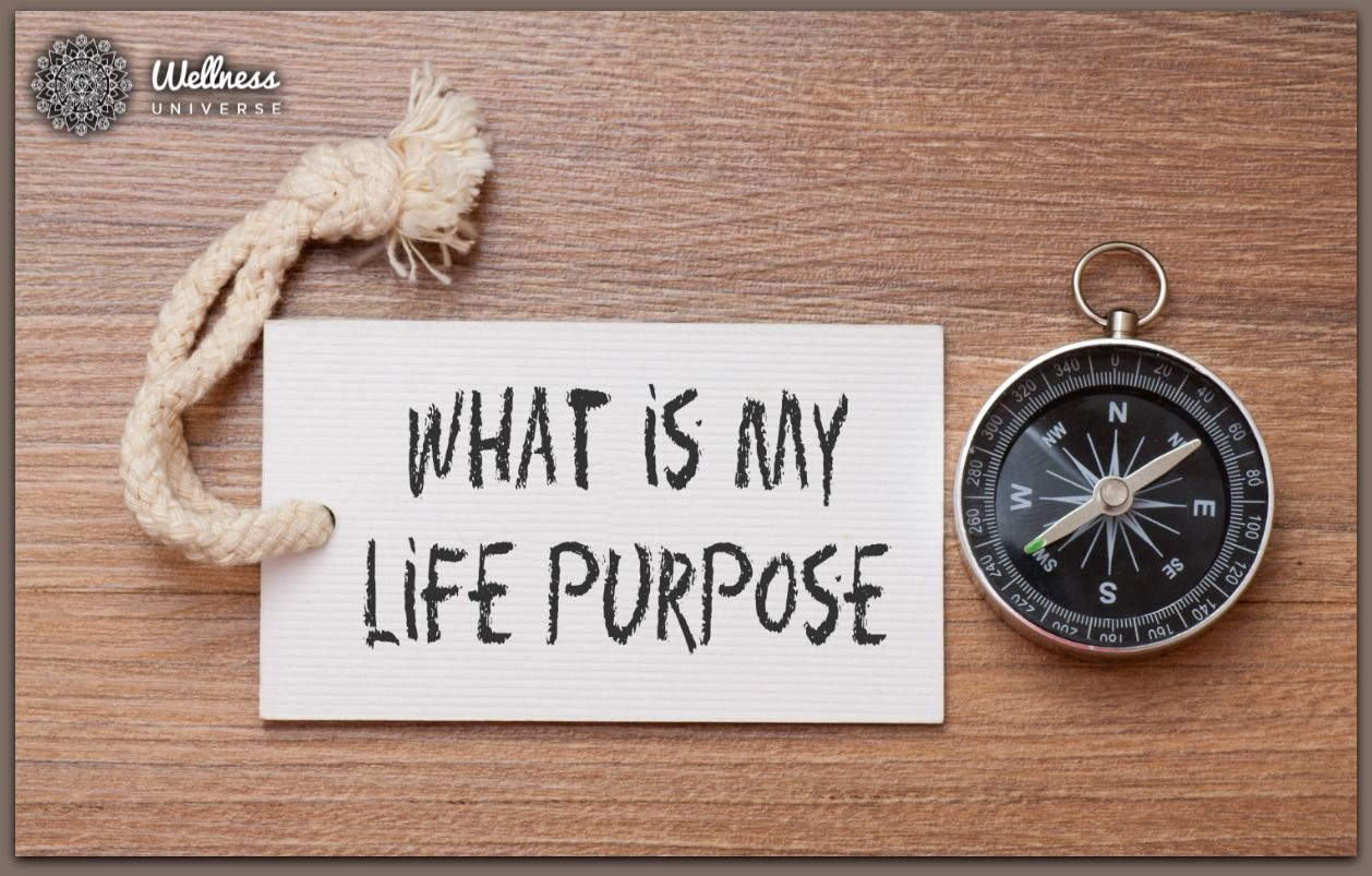 Are you struggling to find your purpose life purpose