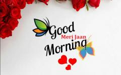 Good Morning Jaan Kiss Images Goodmorningimagesnewcom Good
