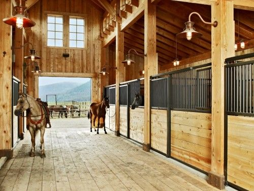 Basic Legend series stalls by Classic Equine - looks great in any barn!