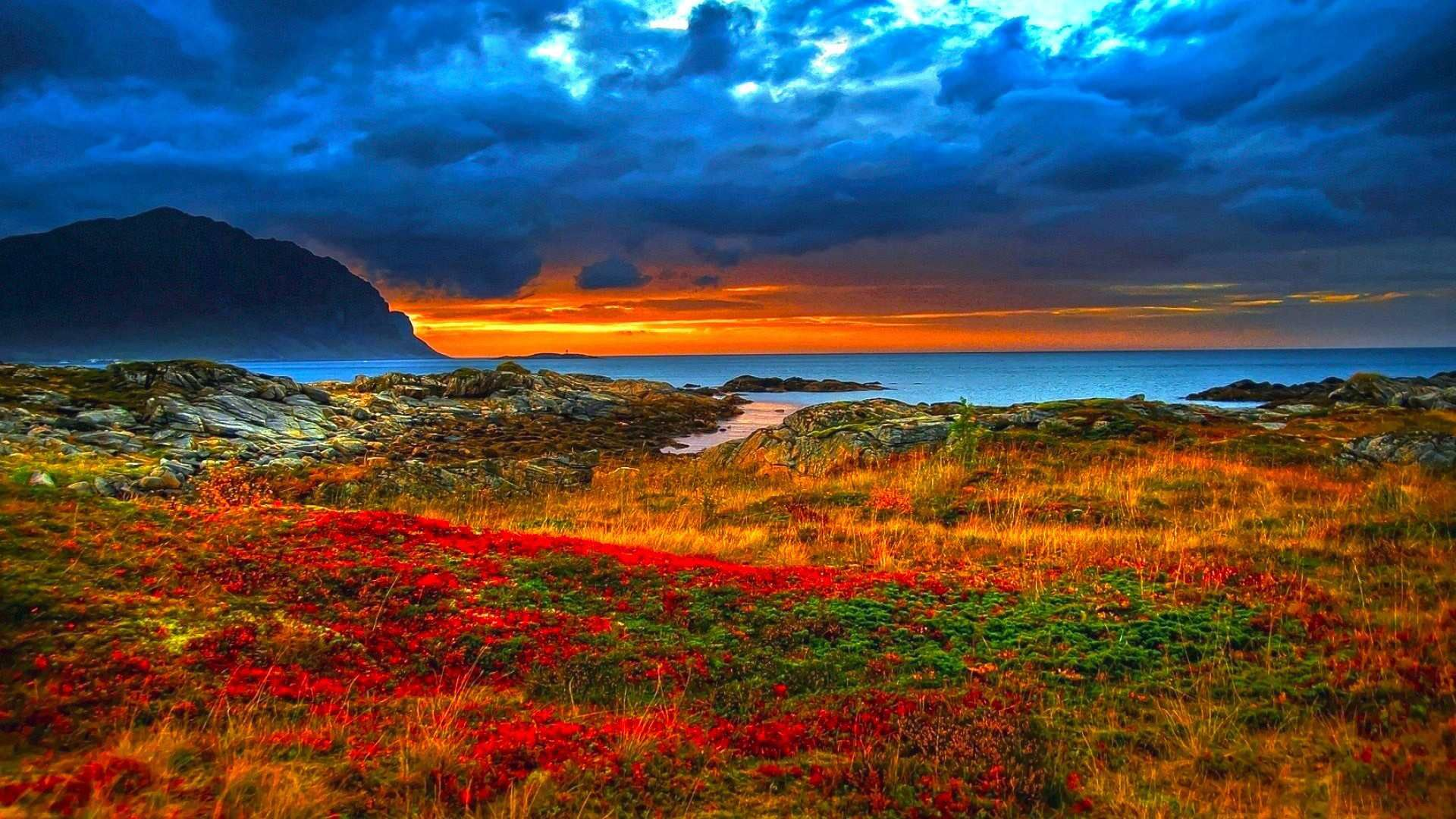 Beautiful Nature Wallpapers - Google Search