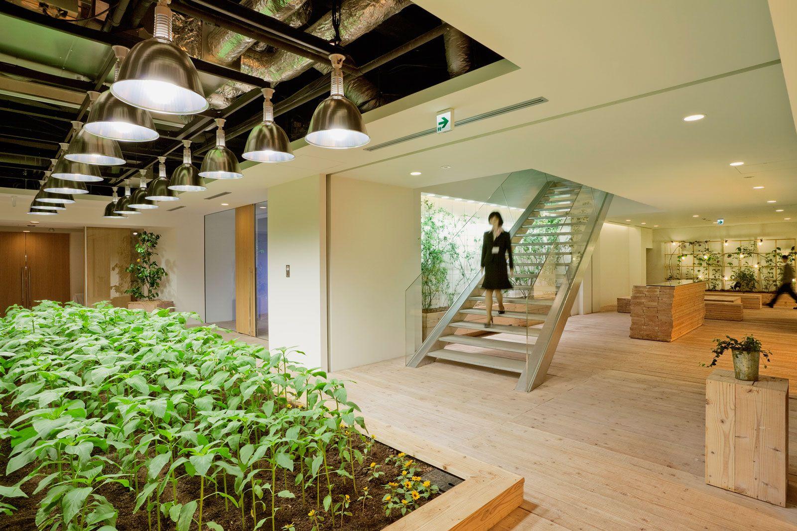 Resultado de imagen de tokyo urban farms
