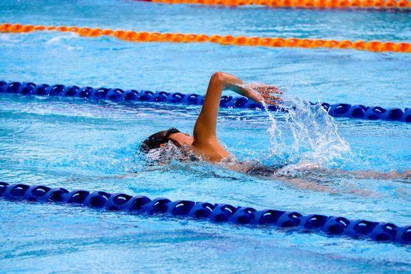 Fitness - Exercise -Fun #GetFit | Calories burned swimming ...