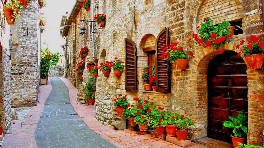 Flower Lined Street In The Town Of Assisi Italy Wallpaper Brown Brick Houses Perugia Wallpaper