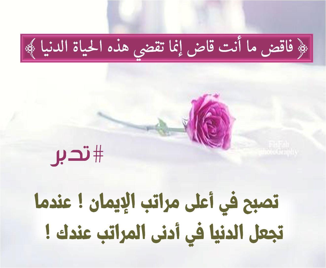 ٧٢ طه Words Qoutes Quran