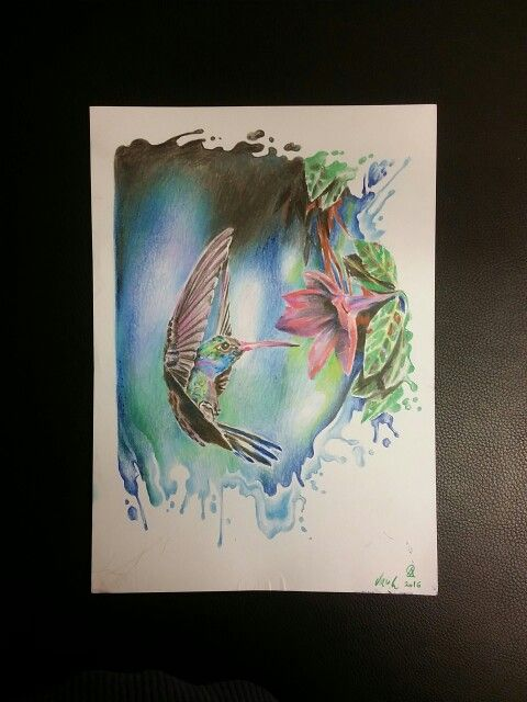 Colibri Dessin Tatouage Watercolor Tattoo Belgium Belgique