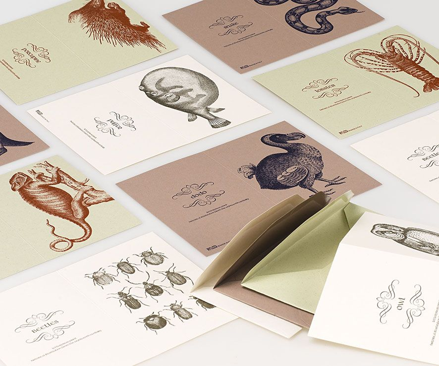 2015 Collection letterpress everyday cards