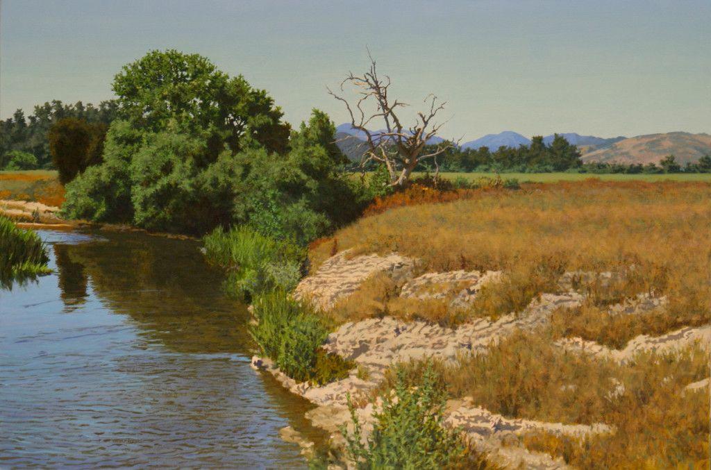 Картинки по запросу freshwater marsh