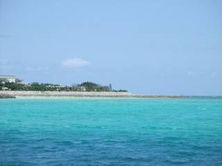 瑠璃の島-gooブログ