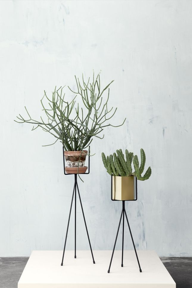 10 Easy Pieces: Metal Plant Stands: Gardenista