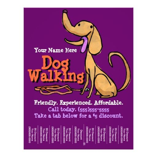 Dog WalkingAdvertising Promotional Flyer Promotional flyers, Dog