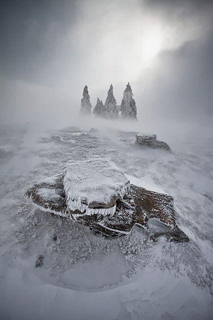 Terres glacées