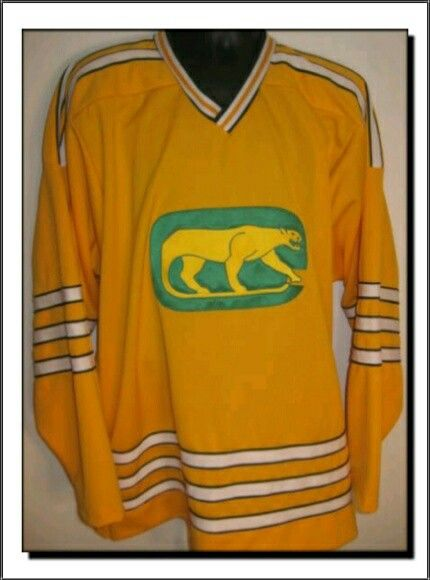 97d02acc59c WHA Chicago Cougars Sweater (1973-1974) | Chicago: Other Sports ...