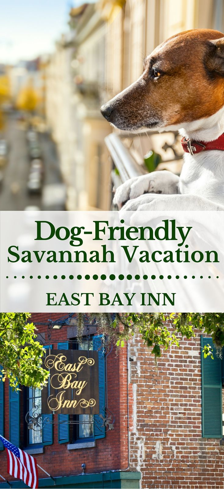 Pet Friendly Hotels In Downtown Savannah You Might Not Expect A