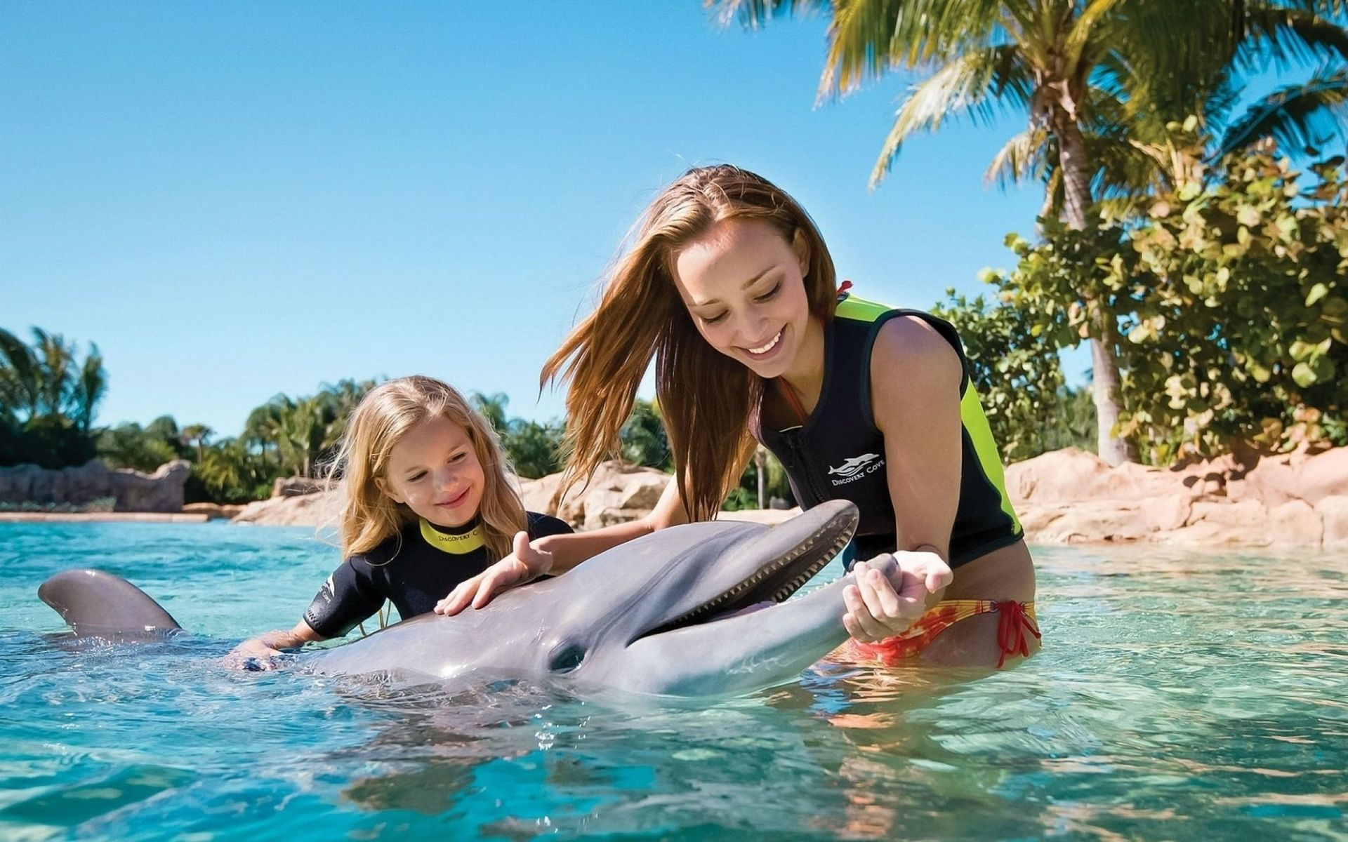 Winfield Homes For Sale Discovery cove, Sea world