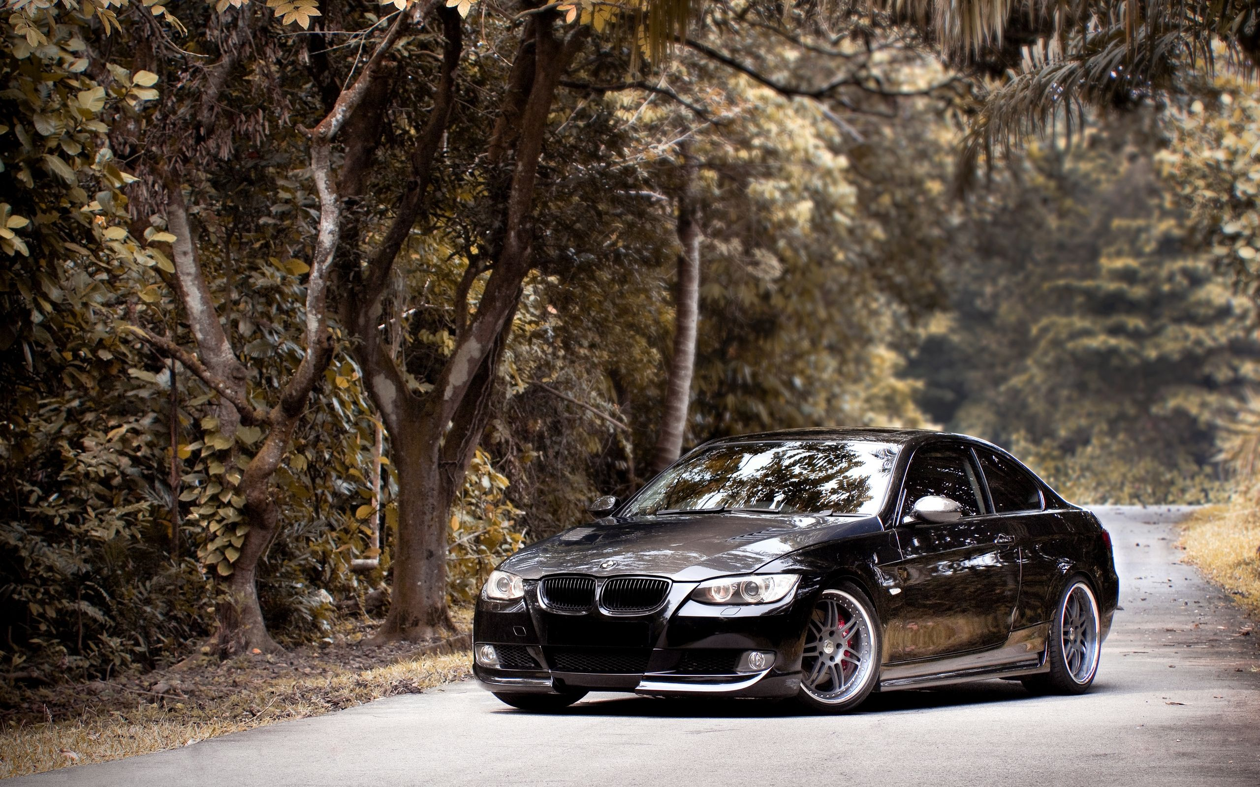 High Quality Bmw 335i Wallpapers   25601600 Bmw 335i E92 Bmw Black Road Black Forest  With Regard To Good Ideas