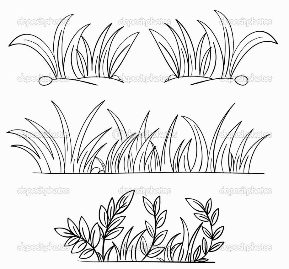Grass Coloring Page Grass Drawing Outline Drawings Drawings