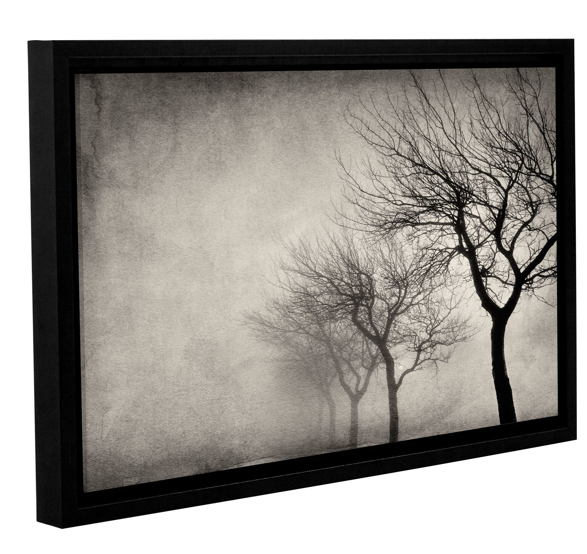 Early morning sepiau by cora niele framed photographic print on