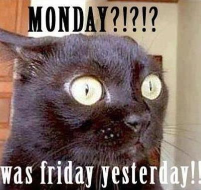 MONDAY?!?!? jajaja así me siento exactamente :S