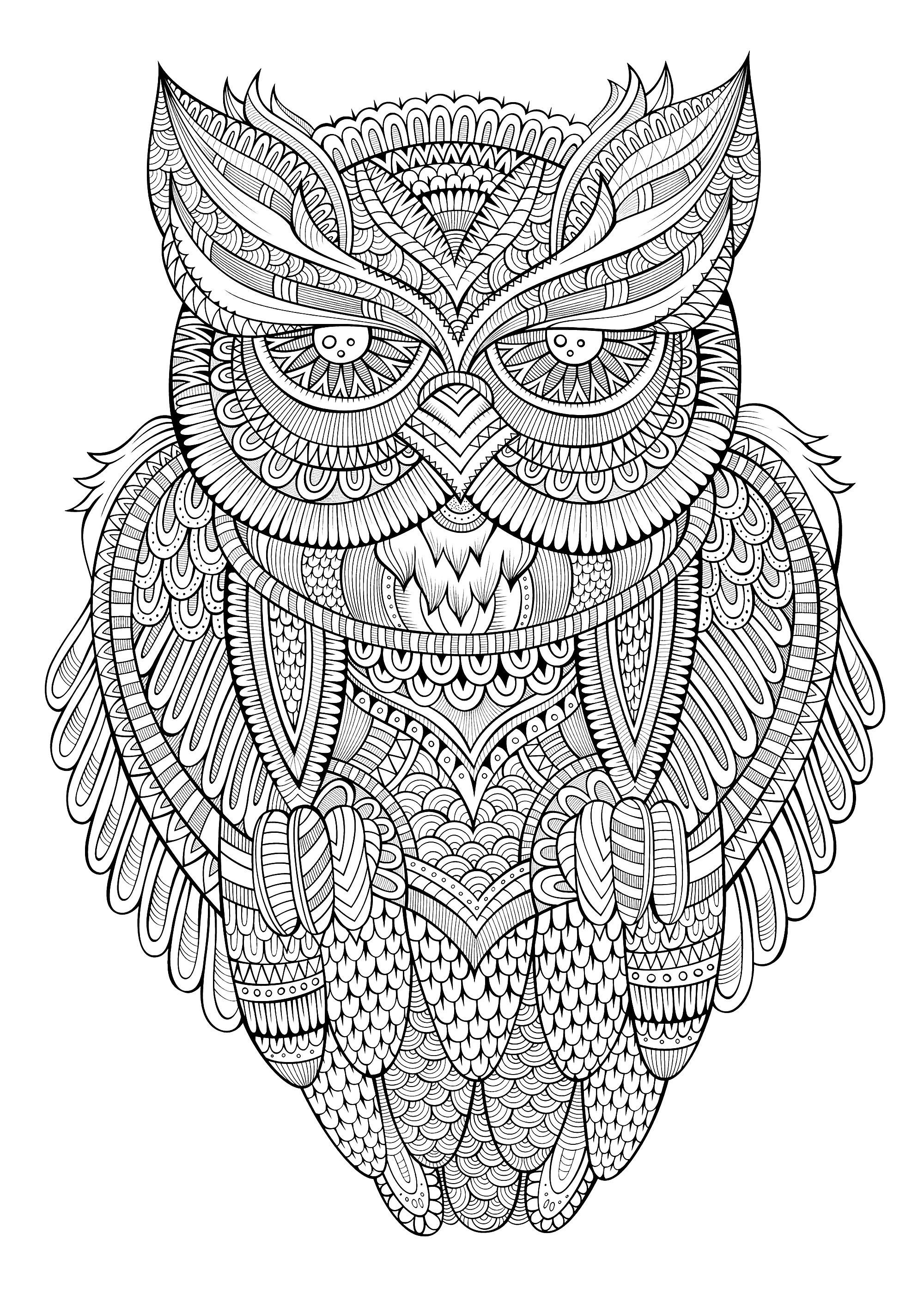 Peaceful Owl Owls Coloring Pages For Adults Just Color Adult