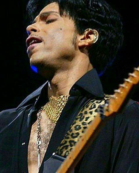 Image result for prince guitar faces