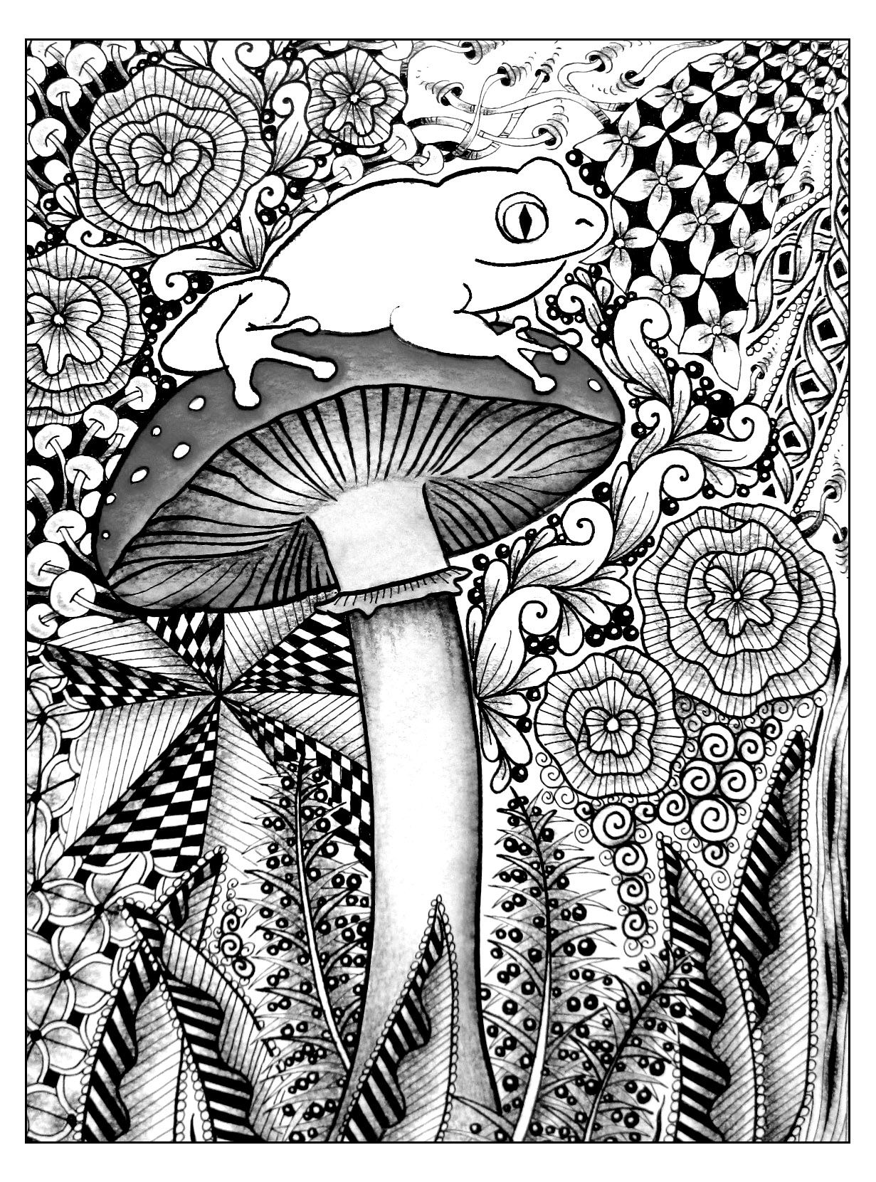 Free coloring page «coloring-frog-jungle». A cute frog on a big ...