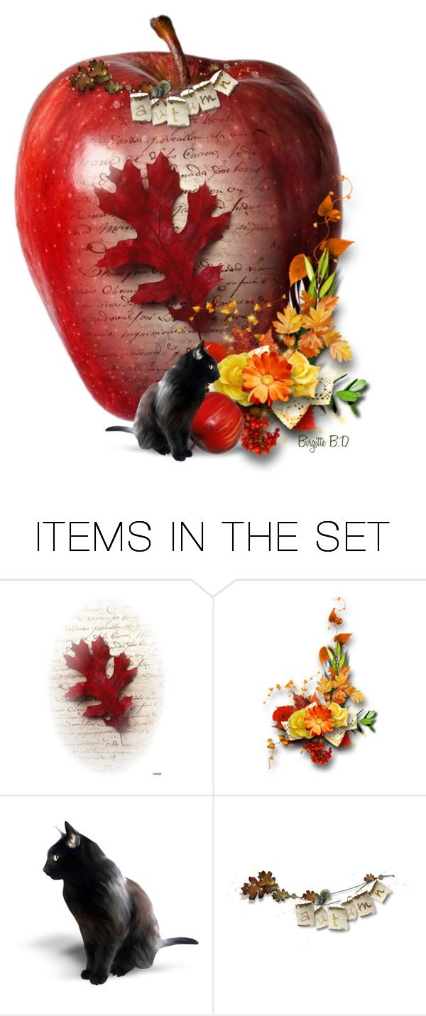 """""""Red Appel"""" by birgitte-b-d ❤ liked on Polyvore featuring art"""