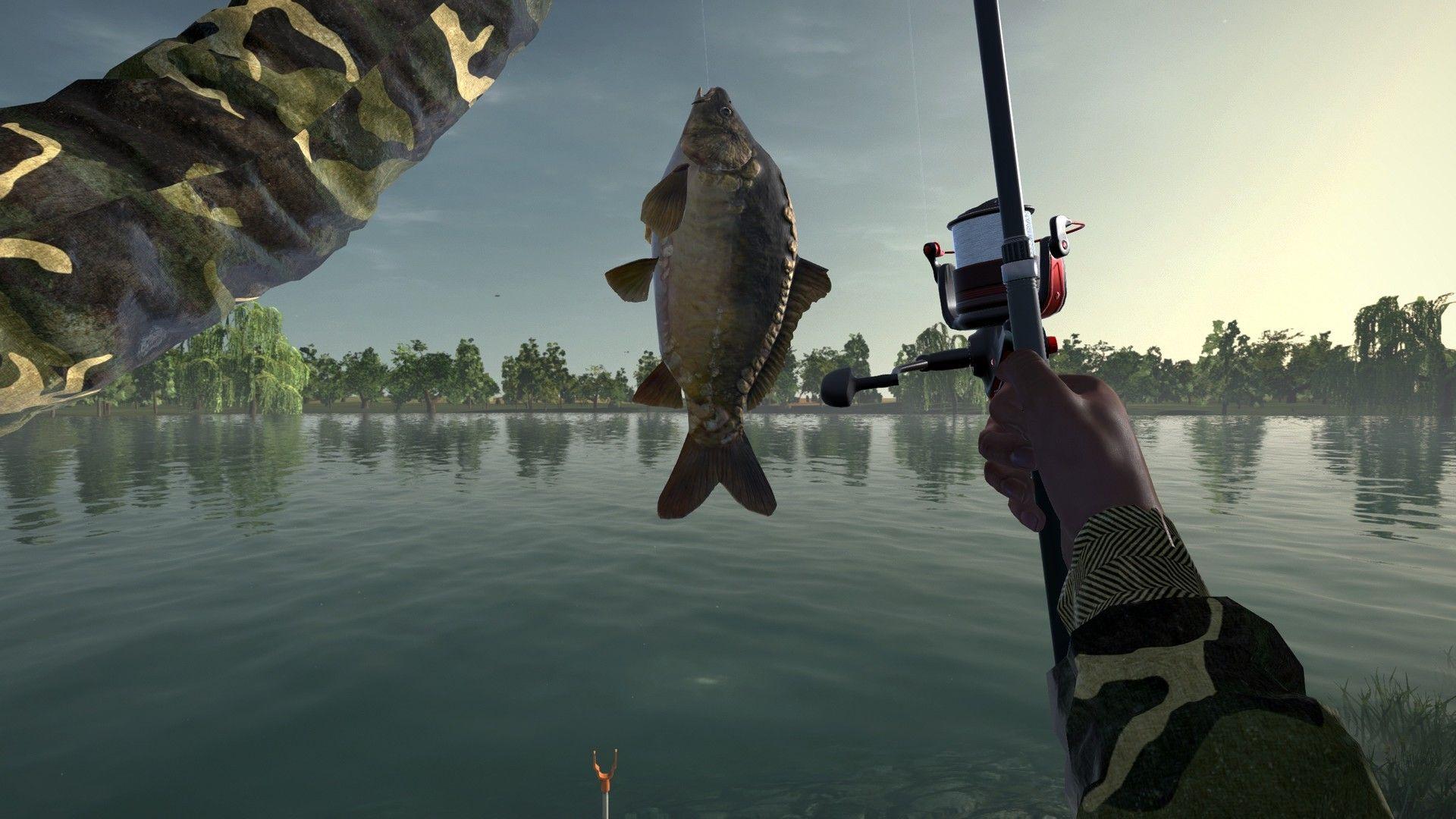 Pin by Niche Gamer on Niche Gamer Moraine lake, Fish