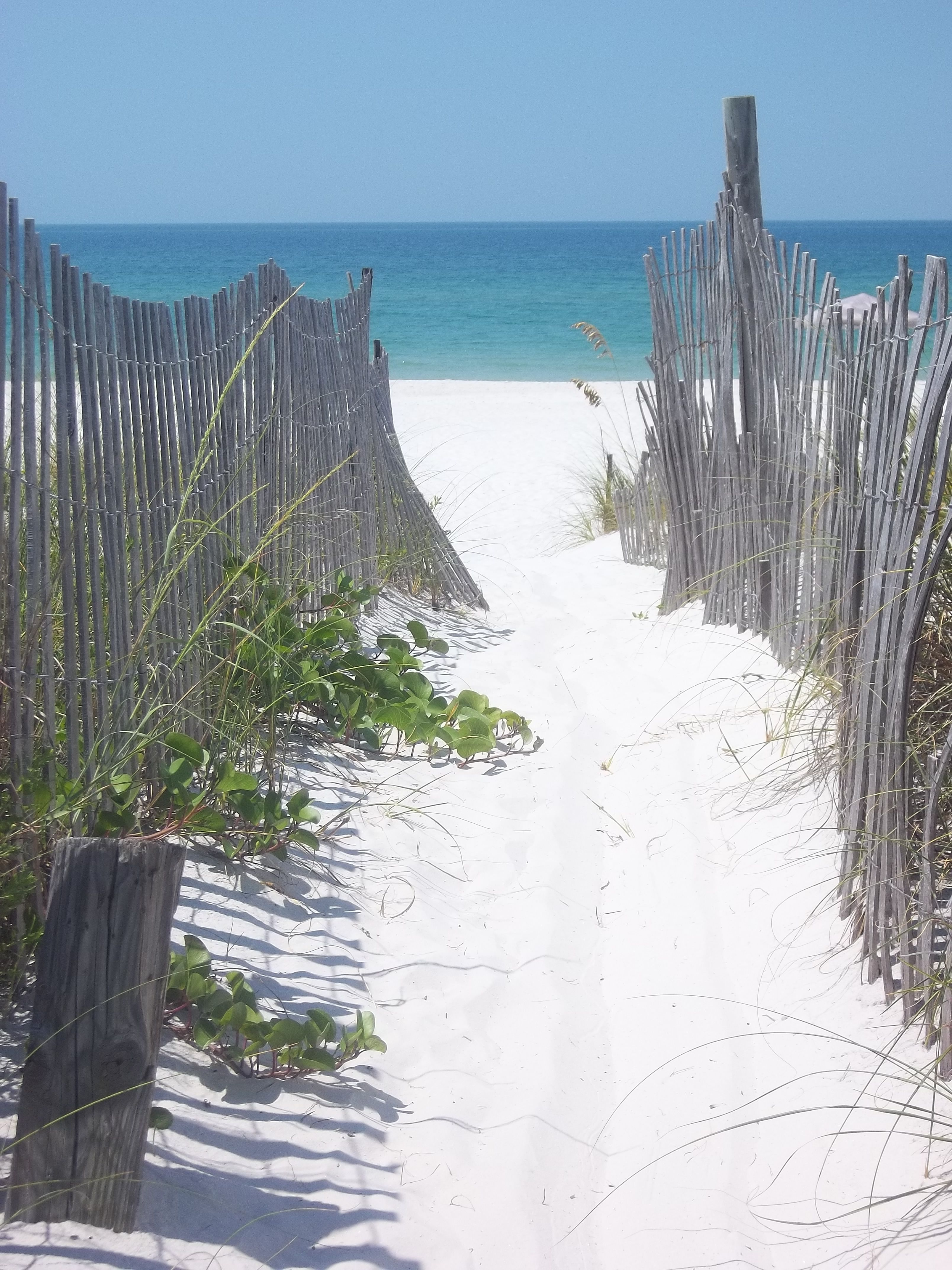 Floridas best kept secret Cape San Blas FL photo by