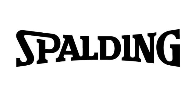 Image result for spalding logo