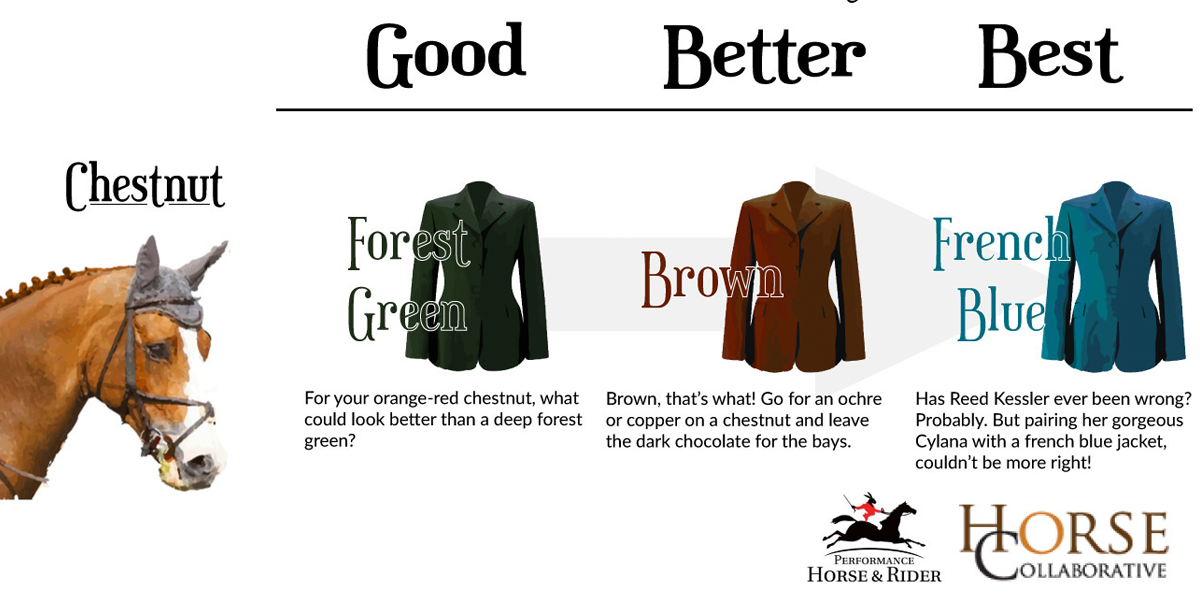 57e0f2be35e The Definitive Guide to Color Coordinating With Your Horse - Horse  Collaborative