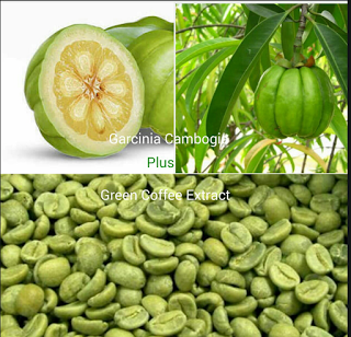 where can i buy garcinia cambogia extract in nigeria