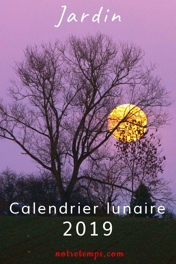 Calendrier Lunaire Notre Temps 2019.Semer Planter Recolter Jour Apres Jour Ce Calendrier