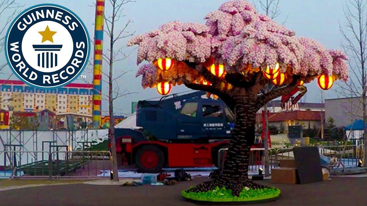 Largest Lego Brick Cherry Blossom Tree Guinness World Records Sakura Tree Cherry Blossom Tree Blossom Trees