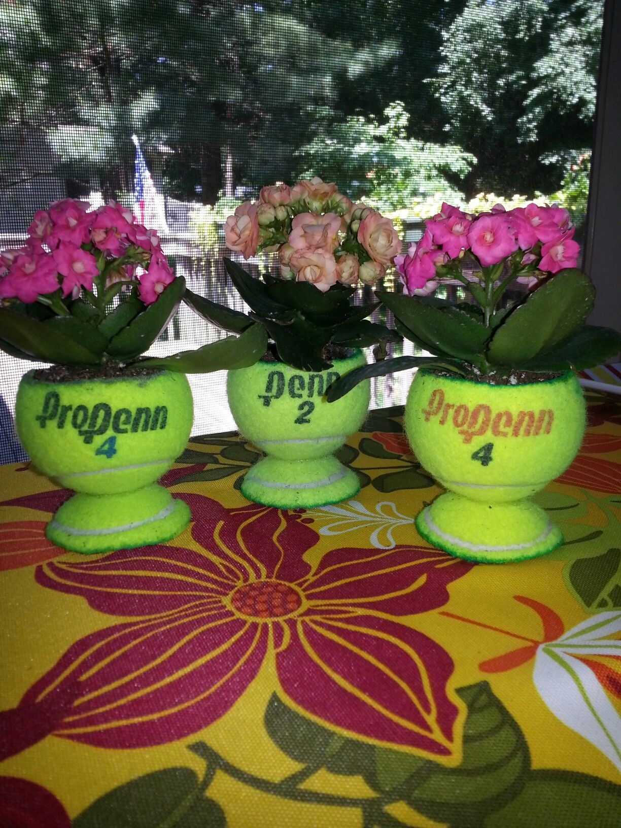 Tennis Trophy Planters Made From Real Tennis Balls Marla
